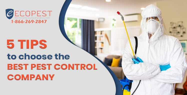 5-tips-to-choose-the-best-pest-control-company