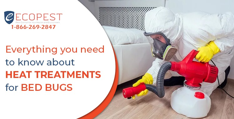 know about heat treatments for bed bugs